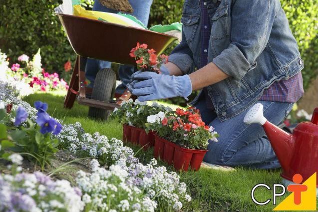 Planejamento, implantação e manutenção de jardins   Artigos Cursos CPT