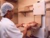 Segurança alimentar em restaurantes, lanchonetes, bares e cozinhas industriais