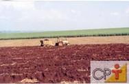 Aplicação econômica de adubos: avaliação do solo