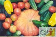 Cultivo de pimentão em estufa: variedades