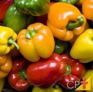 O pimentão possui cores variadas