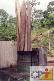 Secagem e tratamento de madeira na fazenda: a durabilidade da madeira