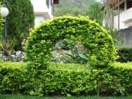 Um pouco mais sobre jardins
