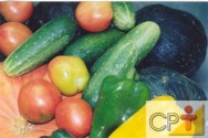 Cultivo de pepino em estufa: a colheita