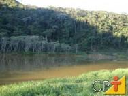 Os consumidores de produtos florestais devem procurar informações sobre as duas formas de reposição florestal obrigatória