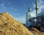 Brasil é líder em capacidade instalada para a produção de energia de biomassa