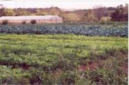 Produção Integrada Agropecuária é apresentada ao Mercosul
