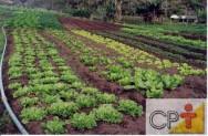 Como tornar sua fazenda orgânica: irrigação