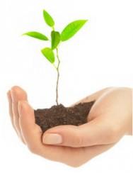 Aprenda Fácil Editora: Agricultores Aumentam Renda Produzindo de Forma Sustentável