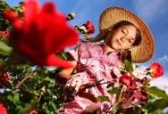 Aprenda Fácil Editora: Cultivo de Flores Transforma Vida de Pequenos Agricultores