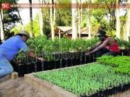 Aprenda Fácil Editora: Rio Claro é a 1ª Cidade do Brasil com Certificação de Produtos Orgânicos.