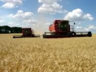 Exportações do agronegócio estabilizam economia nacional