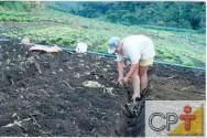 Cultivo orgânico de hortaliças: uso da matéria orgânica