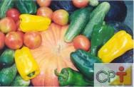 Cultivo orgânico de tomate, pimentão, abóbora e pepino: defensivos naturais