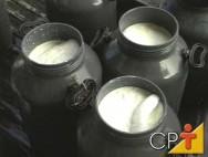 Produção de queijos de leite de cabra: leite de cabra
