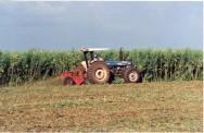 Cadastramento Ambiental Rural usará imagens de satélite