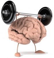 Aprenda Fácil Editora: Tenha uma Boa Memória Exercitando seu Cérebro.