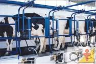 Instalação de queijaria e controle de qualidade:  qualidade higiênica do leite