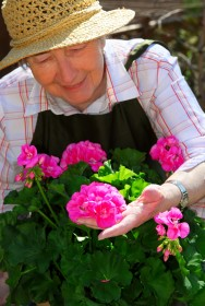 Aprenda Fácil Editora: Jardinagem é Terapia para Condôminos