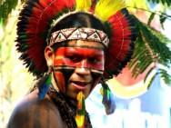 Aprenda Fácil Editora: Aldeia Pataxó Combina Tradição com Ecoturismo Sustentável