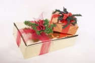 Aprenda Fácil Editora: Varejistas Apostam em Embalagens Temáticas para Aumentar Vendas no Natal