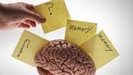 Aprenda Fácil Editora: Exercite sua Memória para Lembrar Bons Momentos da Vida