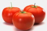 Aprenda Fácil Editora: EMBRAPA e parceiros desenvolvem tomates livres de agrotóxicos