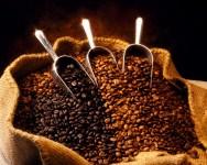 Aprenda Fácil Editora: Café arábica brasileiro tem melhor cotação em relação ao colombiano
