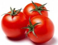Aprenda Fácil Editora: Estado é destaque em fitossanidade do tomate