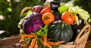 Aprenda Fácil Editora: A produção de alimentos orgânicos no Brasil é uma grande oportunidade para a agricultura familiar, afirma diretor do MDA