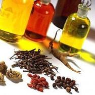 Plantas aromáticas utilizadas na produção de óleos essenciais