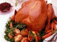 abatedouro de frango