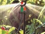 Irrigação: relação entre solo, água, clima e planta