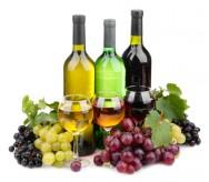 Aprenda Fácil Editora: Cadeia produtiva da uva e do vinho sela acordo para modernização da produção