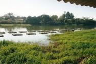Aprenda Fácil Editora: Órgão Estadual analisa cadeia produtiva da piscicultura e qualidade da água em Reservatório