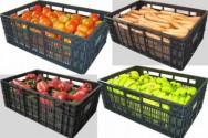 Aprenda Fácil Editora: Instituições garantem mais de 70 mil caixas plásticas a produtores