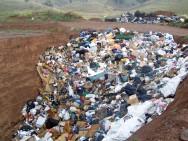 Aterro sanitário: saiba mais sobre o assunto e os tipos de destinação do lixo