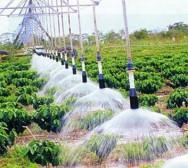 Aprenda Fácil Editora: UNESP lança software gratuito para controlar irrigação
