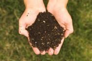 Aprenda Fácil Editora: Como fazer adubo com o lixo orgânico que você produz em casa
