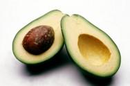 Aprenda Fácil Editora: Como iniciar um plantio comercial de abacate?