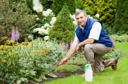 Um bom jardineiro deve escolher as ferramentas com cuidado, pois estas servirão não somente na implantação do jardim, como também serão utilizadas na manutenção deste