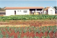 O preparo dos canteiros objetiva colocar o local da horta em condições de ser cultivado