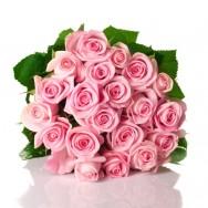 Produtores de rosas de Minas Gerais lucram com o Dia Internacional da Mulher