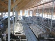 O sistema de confinamento em galpão fechado não é muito utilizado no Brasil por ser considerado caro, além de exigir muitos equipamentos e pessoal treinado.
