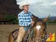 Cavalos - passo a passo da doma natural