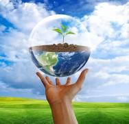 Para cada ser vivo que habita o planeta existe um espaço ao seu redor com todos os outros elementos e seres vivos que com ele interagem, por meio de relações de troca de energia.