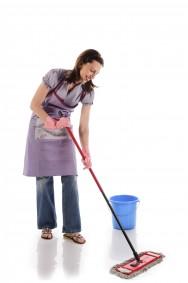Novos direitos da empregada doméstica - Emenda Constitucional 72/2013 (PEC 66/2012)