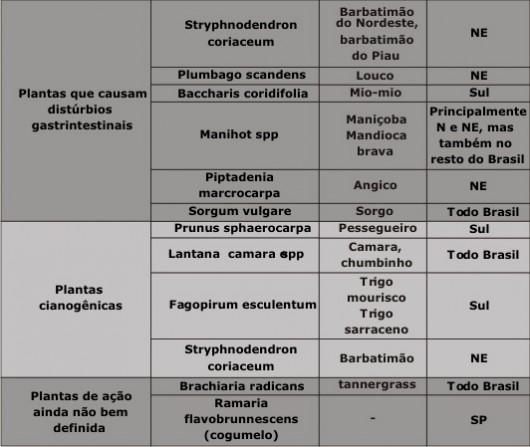 Tabela com as principais plantas tóxicas que causam mortes de bovinos no Brasil