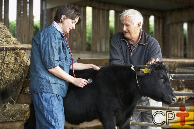 Criação de bovinos - intoxicação por plantas    Artigos Cursos CPT