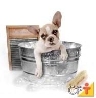 Como montar um pet shop: o banho dos cães